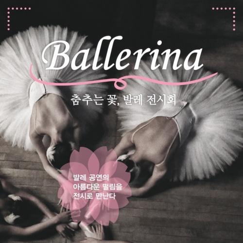 춤추는 꽃, 발레 전시회 Ballerina 앨범 바로가기