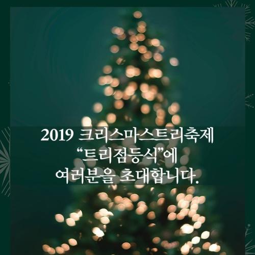 """2019 크리스마스트리축제 """"트리점등식""""에 여러분을 초대합니다. 앨범 바로가기"""