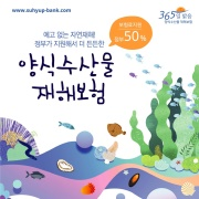 수협 양식수산물 재해보험 앨범 바로가기